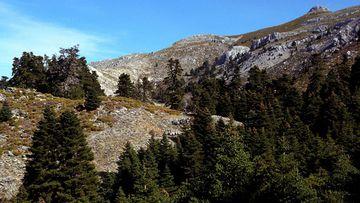 Parque Nacional Sierra de las Nieves.