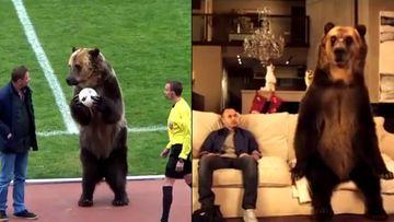 El famoso oso ruso Tima, un viejo amigo de Iniesta y del Valladolid