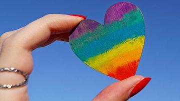 Día Internacional del Orgullo Gay.